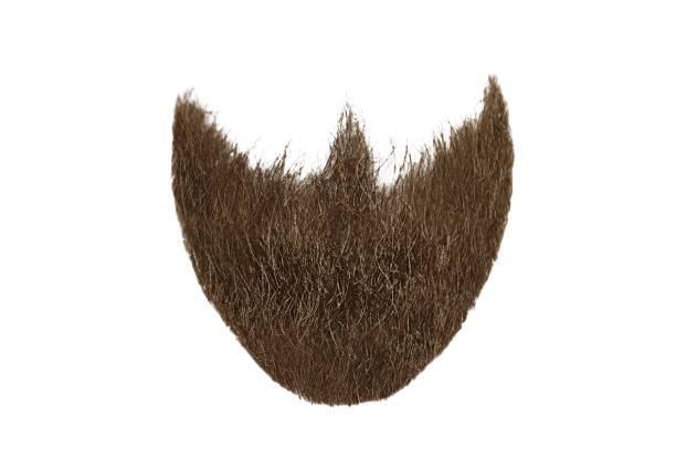 barba poblada moda